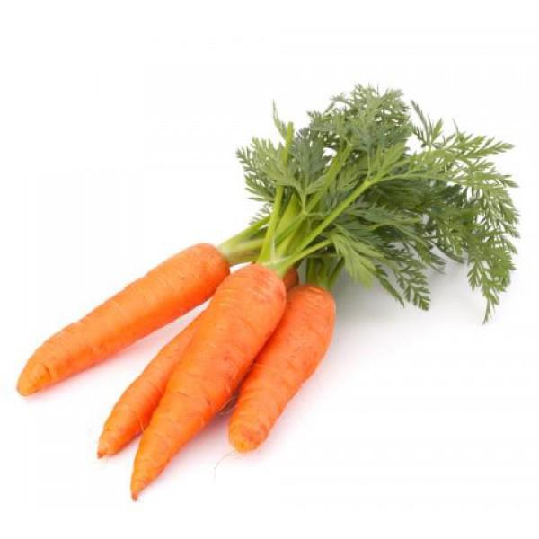 روش نگهداری هویج